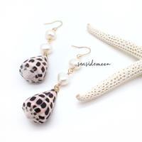 cone shell × fleshwater pearl pierce