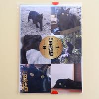 季刊黒猫 2021年冬