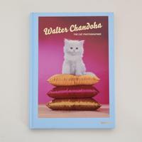 Walter Chandoha THE CAT PHOTOGRAPHER