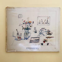 Saul Steinberg: Still Life and Architecture
