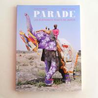 PARADE LES ELEPHANTS PEINTS DE JAIPUR