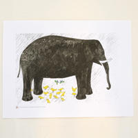 "BRUNO MUNARI ポスター ""Elephant"""