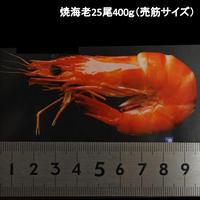 焼海老BT60(ブラックタイガーえび25尾/400g)
