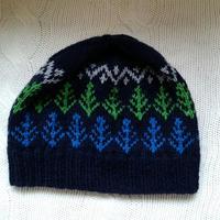 手編みのニット帽(winter forest )
