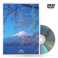 DVD【相曽誠治・講演 2】世紀末現象と太陽回帰