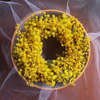 ミモザのミニリースGIFTBOX(直径12-13cm)