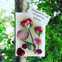 ボタニカルアロマワックスプレート (飾り花:ローズ / アロマ:ローズ)