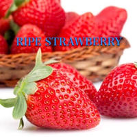 RIPE STRAWBERRY 30ml ストロベリー