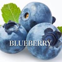 BLUE BERRY ICE 100ml ブルーベリーアイス