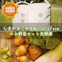 数量限定◆早割&送料無料◆【毎月定期便】しまのおこめ 白米5kg&Müller's Farmお野菜セット*季節のお裾分け付き