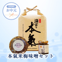 【期間限定●お中元ギフト】本氣米梅味噌セット<送料無料>