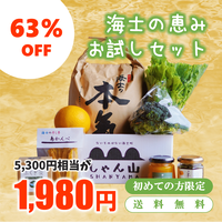 【63%OFF!初めての方限定】海士の恵みお試しセット●期間限定キャンペーン<送料無料>