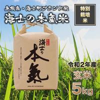 【令和2年産】ブランド米◆海士の本氣米 玄米5kg<特別栽培米>