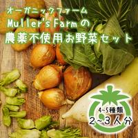 農薬不使用!旬のお野菜4~5種類セット<2~3名様分>◆Muller's Farm◆