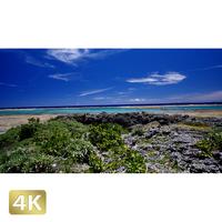 1026028 ■ 黒島 宮里海岸
