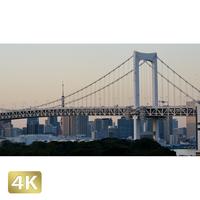 1028036 ■ 東京 レインボーブリッジ