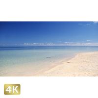 1038026 ■ 石垣島 米原ビーチ