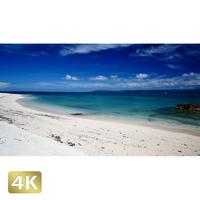 1026012 ■ 黒島 西の浜