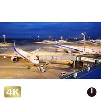 1028055 ■ 東京 羽田空港