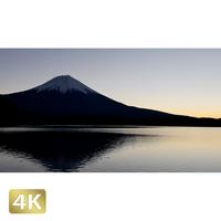 1018076 ■ 富士山 田貫湖