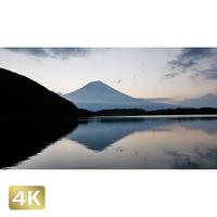 1011012 ■ 静岡 田貫湖 富士山