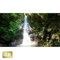 1004012 ■ 秋川渓谷 払沢の滝