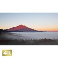 1015019 ■ 富士山 紅富士