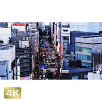 1028007 ■ 東京 明治通り夕景