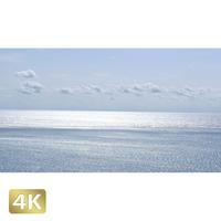 1022004 ■ 石垣島 海