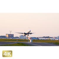 1031017 ■ 成田空港 A南 離陸 JAL