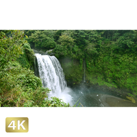 1010020 ■ 静岡 音止の滝