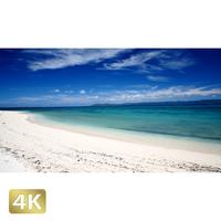 1026018 ■ 黒島 西の浜