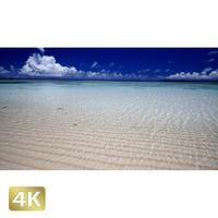 1025029 ■ 波照間島 ニシ浜