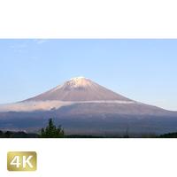 1016020 ■ 富士山 紅葉