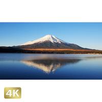 1018060 ■ 富士山 山中湖