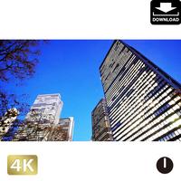 2028082 ■ 東京 西新宿
