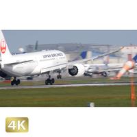 1031118 ■ 成田空港 北 着陸JAL