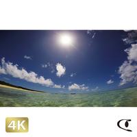 1025003 ■ 波照間島 ニシ浜