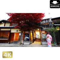 2043094 ■ 京都 祇園白川