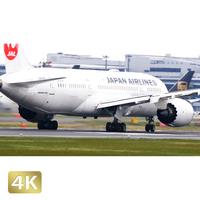 1031032 ■ 成田空港 A北 離陸 JAL