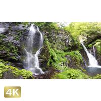 1001006 ■ 日光 裏見の滝 荒沢相生滝
