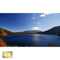 1018021 ■ 富士山 本栖湖