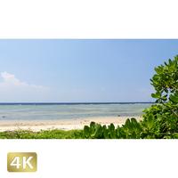1023037 ■ 西表島 南風見田の浜