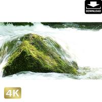 203534 ■ 奥入瀬渓流 石ヶ戸の瀬