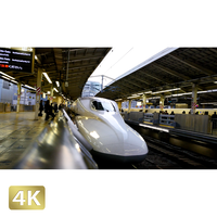 1028065 ■ 東京 東京駅新幹線