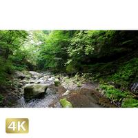 1002045 ■ 日光 裏見の滝 荒沢相生滝