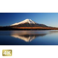 1018067 ■ 富士山 山中湖