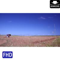 4041139 ■ 宮古島 畑