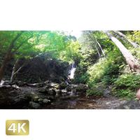 1005021 ■ 秋川渓谷 払沢の滝