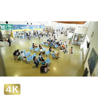 1038088 ■ 石垣島 離島ターミナル